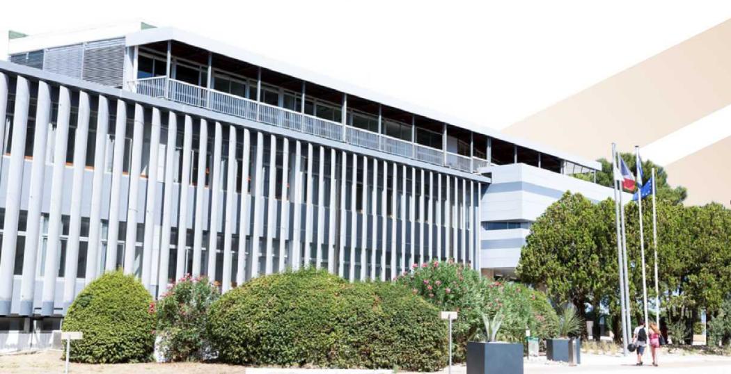 蒙彼利埃高等商学院